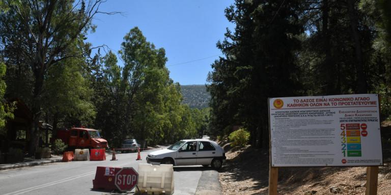 Απαγόρευση κυκλοφορίας σε πάρκα και δάση λόγω κινδύνου πυρκαγιάς -Για ποιες περιοχές της Αττικής ισχύει