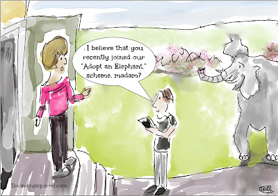 A funny cartoon in which a lady who has adopted an elephant actually has to take delivery of it...