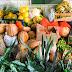 Covid-19: Ceasa doa 2 toneladas de hortifrut para entidade de Feira de Santana