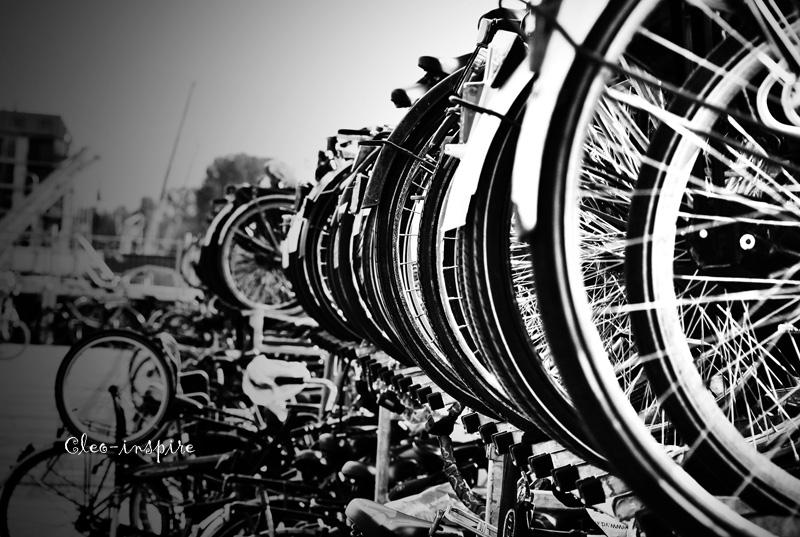 Holenderskie rowery