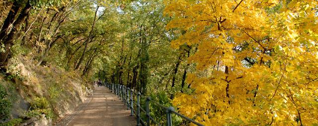 merano foliage autunno weekend