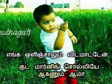 Whatsapp Status Dp 150 Good Morning Whatsapp Status In