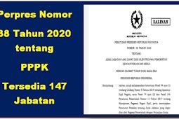 Perpres Nomor 38 Tahun 2020 tentang PPPK: Tersedia 147 Jabatan