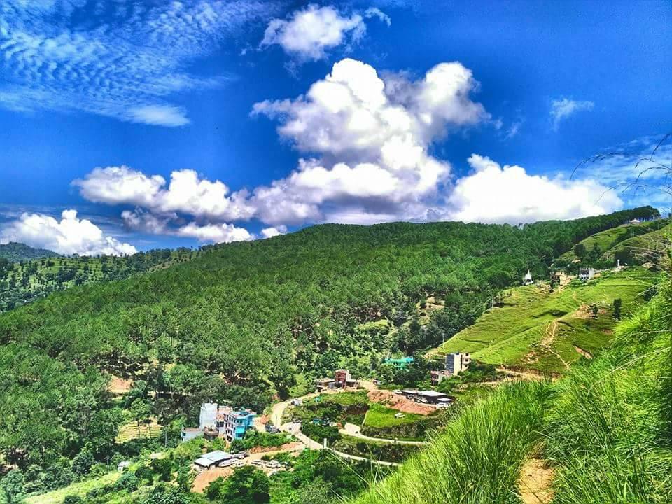 Srinagar Batasedanda