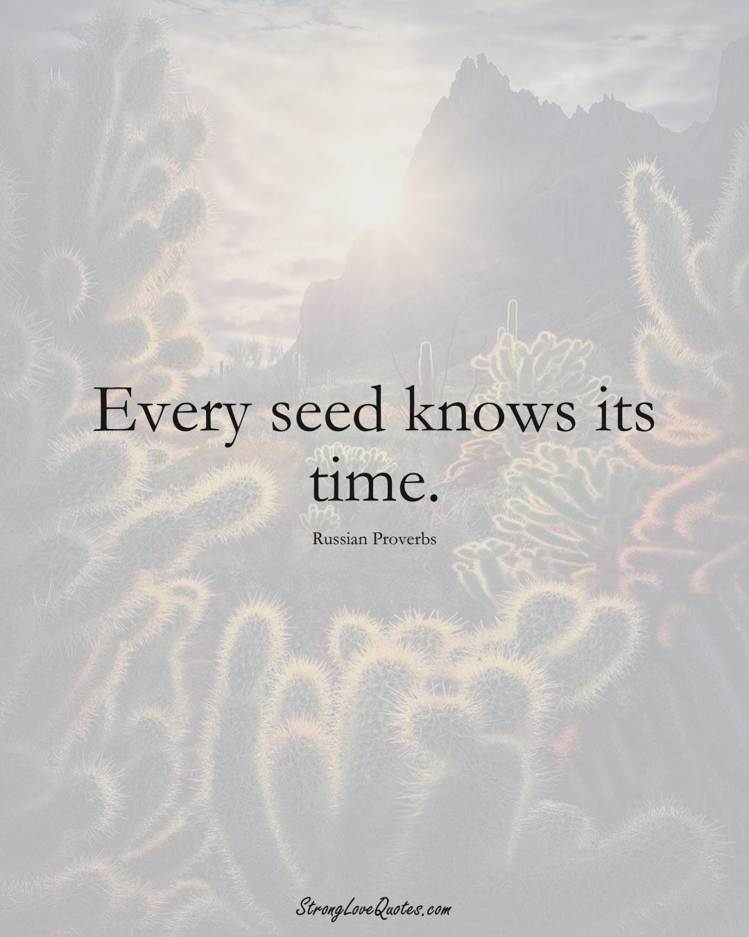Every seed knows its time. (Russian Sayings);  #AsianSayings
