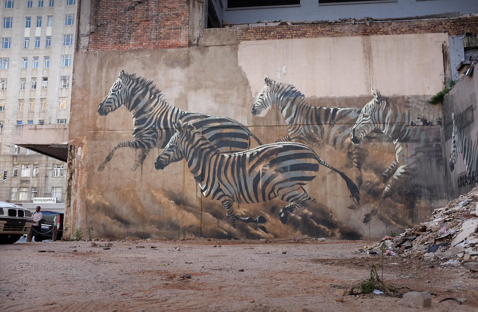 While we last heard from her a few weeks ago in Dominican Republic, Faith47 is back in South Africa where she just finished working on this breathtaking artwork on the streets of Johannesburg.