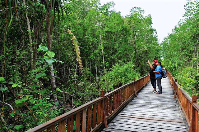 Malaysia Ecotourism