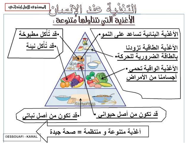 تلخيصات جميع دروس النشاط العلمي للمستوى الأول من التعليم الإبتدائي