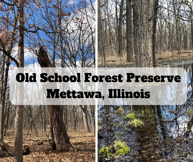 Early Spring Tranquility and Hiking at Old School Forest Preserve in Mettawa, Illinois