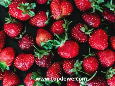 Frozen food_Ide bisnis kuliner online untung besar