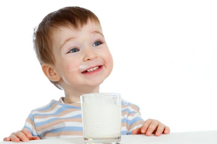 susu untuk anak 2 tahun
