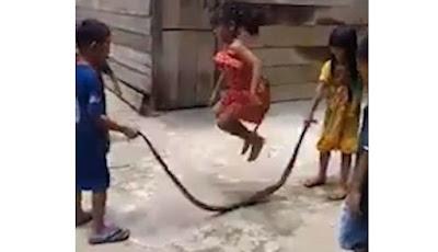 Anak-anak bermain dengan ular