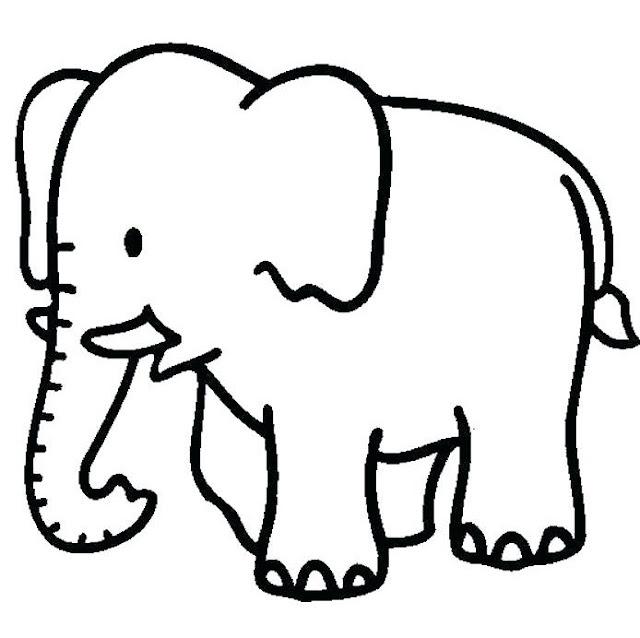 رسومات حيوانات للتلوين