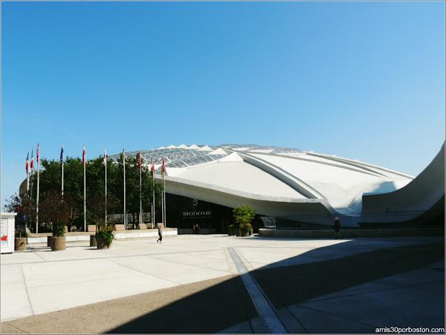Principales Atracciones Turísticas en Montreal: Biodôme