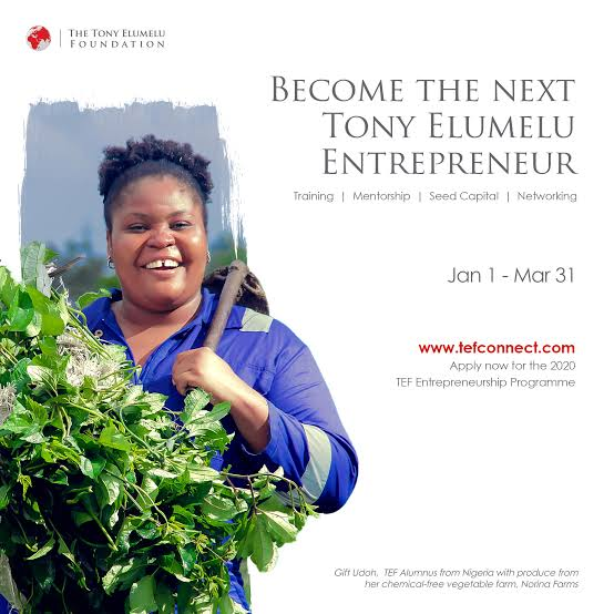 How To Apply And Win Tony Elumelu Entrepreneurship Program Grant 2021 ($5000)
