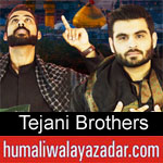https://www.humaliwalayazadar.com/2013/06/shabbir-and-abbas-tejani-nohay-2007-2013.html