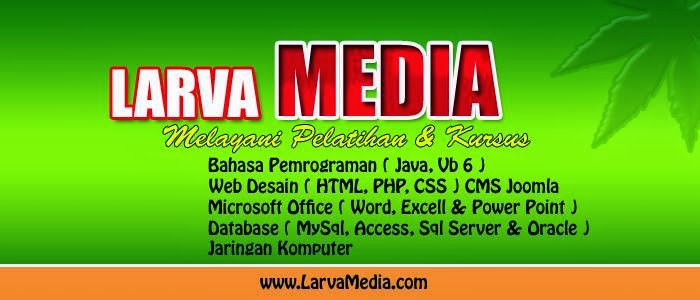 Company Profile Larva Media
