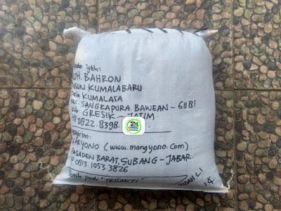 Benih padi yang dibeli   MOH. BAHRON Gresik, Jatim.  (Setelah packing karung).