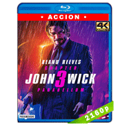 John Wick 3: Parabellum (2019) HDR Ultra HD BDREMUX 2160p Latino