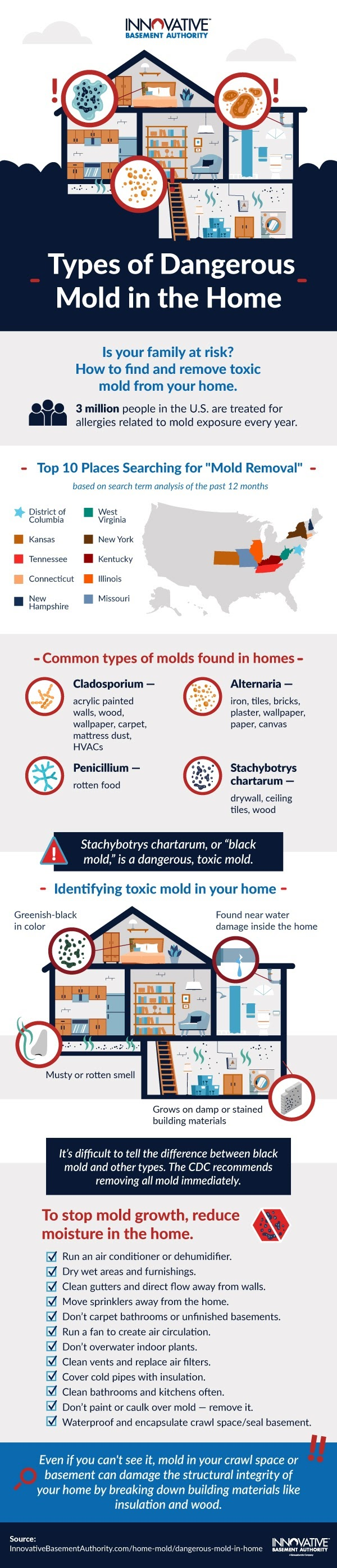 Different Types of Dangerous Mold in Our Homes #infofraphic