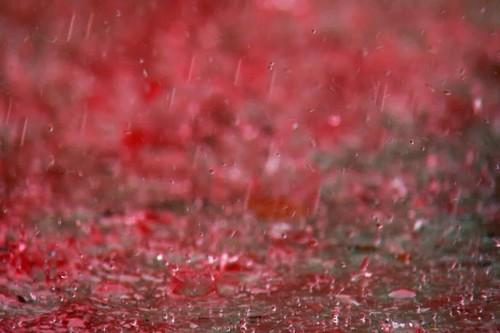 1. Ploaie roșie în India, Kerala