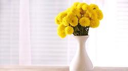 3 Model Vas Bunga Cantik Untuk Ruang Tamu Minimalis