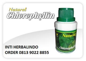 """NATURAL-CHLOROPYLLIN-mencegah-kanker-peluruh-racun-natural-nusantara-nasa"""