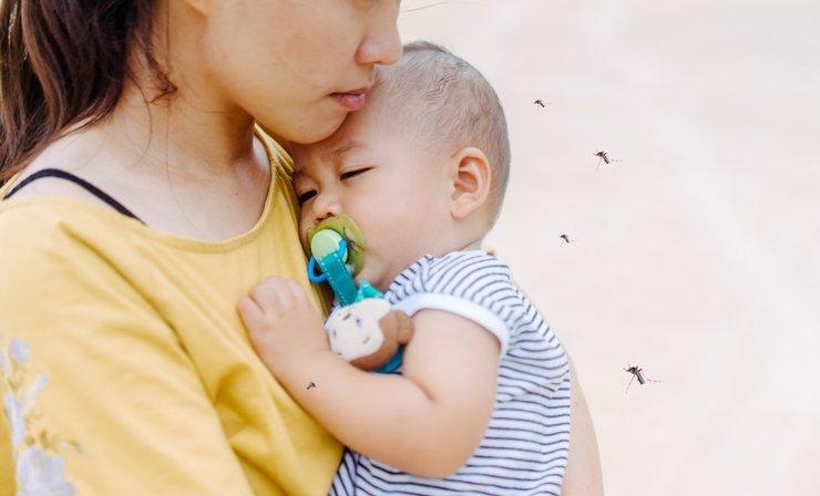 Ini Bahaya Gigitan Nyamuk Bagi Bayi