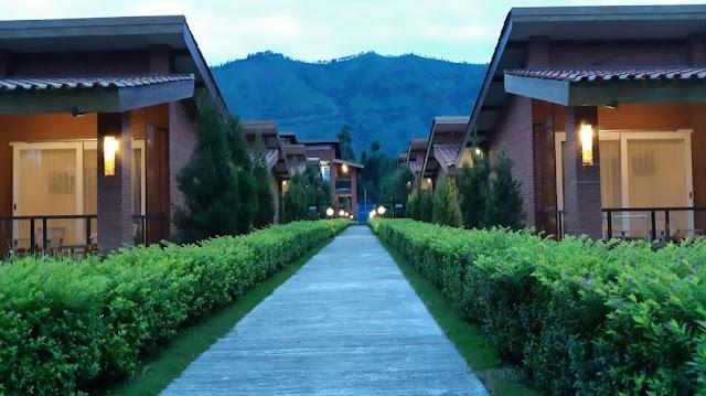 Hotel terrace dan resto, penginapan dekat gunung bromo, harga terbabru penginapan 2020