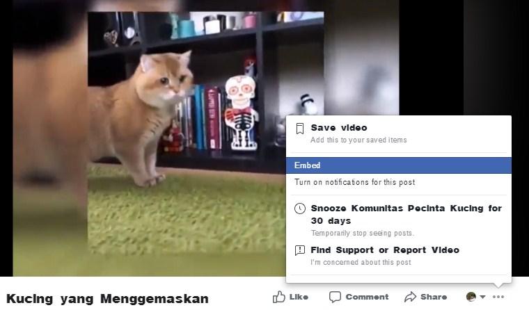 Cara Memasukkan Video Facebook di Postingan Blog - Kode Embed, Tempel
