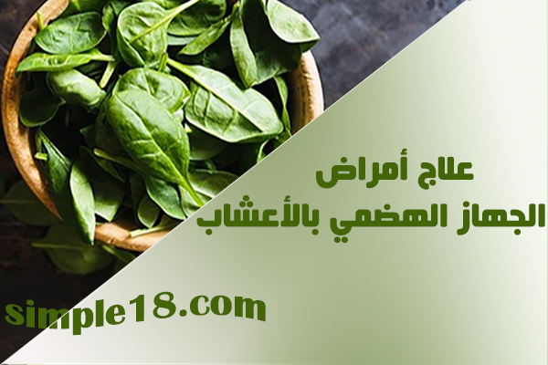 علاج أمراض الجهاز الهضمي بالأعشاب - وصفات