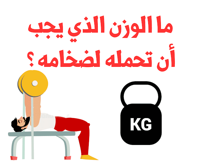 ما الوزن الذي يجب أن تحمله أثناء الرغبة في الحصول على الضخامة ؟