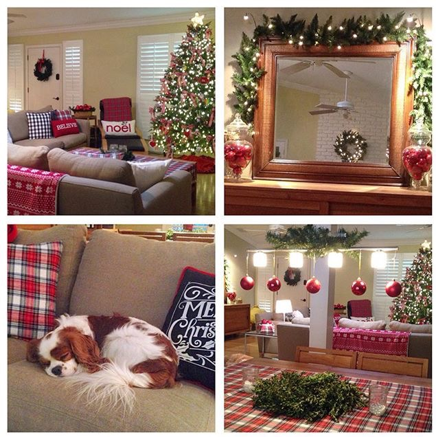 Christmas decor collage woodland, tartan theme with Blenheim Cavalier King Charles Spaniel