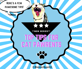Top Tips For Cat Pawrents Banner ©BionicBasil®