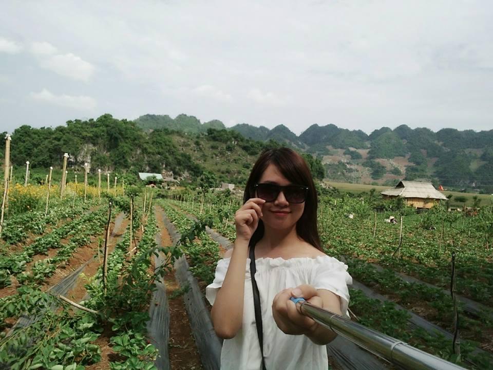 Tổng chi phí đi du lịch bụi Mộc Châu của cô gái trẻ