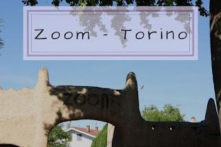 Zoom Torino cosa vedere