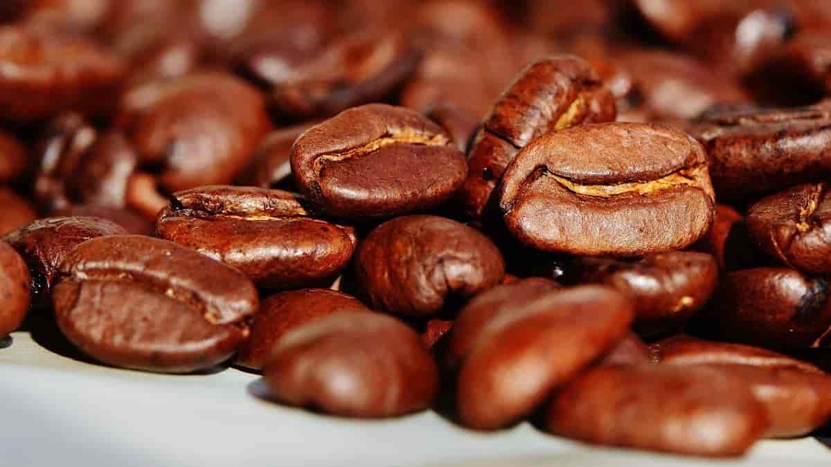 dicas para você preparar o melhor café em casa
