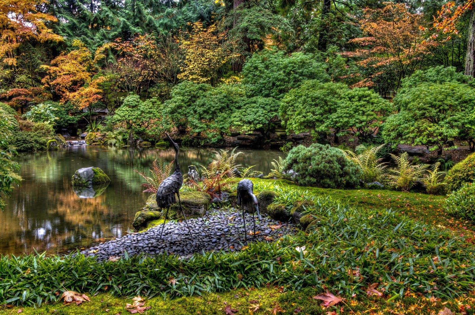 Thom Zehrfeld Photography : Japanese Gardens Portland