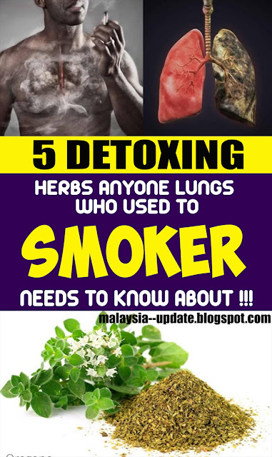 5 Lung-Detoxing Herbs Smoker Needs to Know