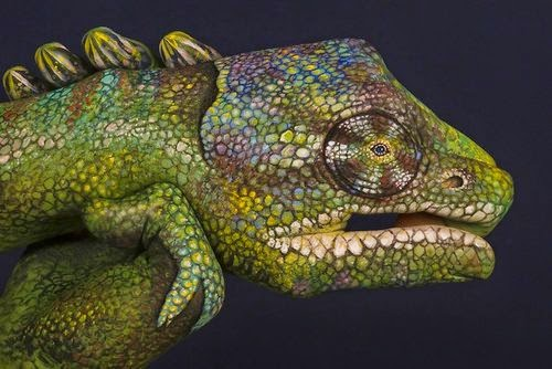 04-Chameleon-Guido-Daniele-Painting-Animals-on-Hands-www-designstack-co