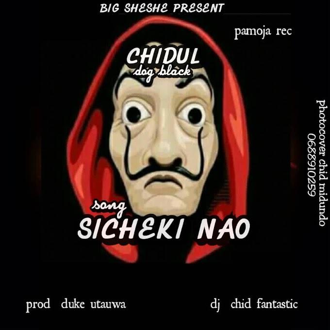 AUDIO | CHIDUL - SICHEKI NAO | DOWNLOAD NOW