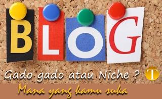 Perbedaan Blog Gado-Gado Dengan Blog Satu Niche (Spesifik) di Mata Adsense