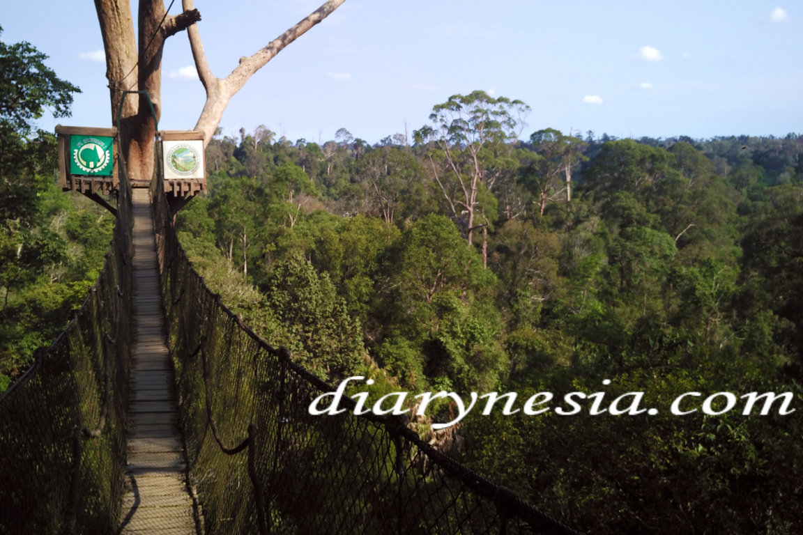 How to get to Bangkirai hill in balikpapan, balikpapan tourism, best tourist attraction in balikpapan, diarynesia