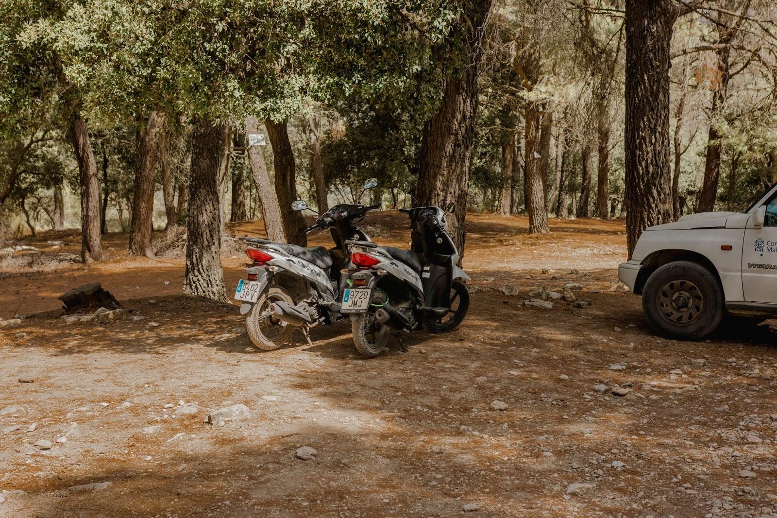 Skuterem przez Majorkę. Leśny parking na Majorce