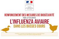 http://agriculture.gouv.fr/tout-ce-quil-faut-savoir-sur-linfluenza-aviaire