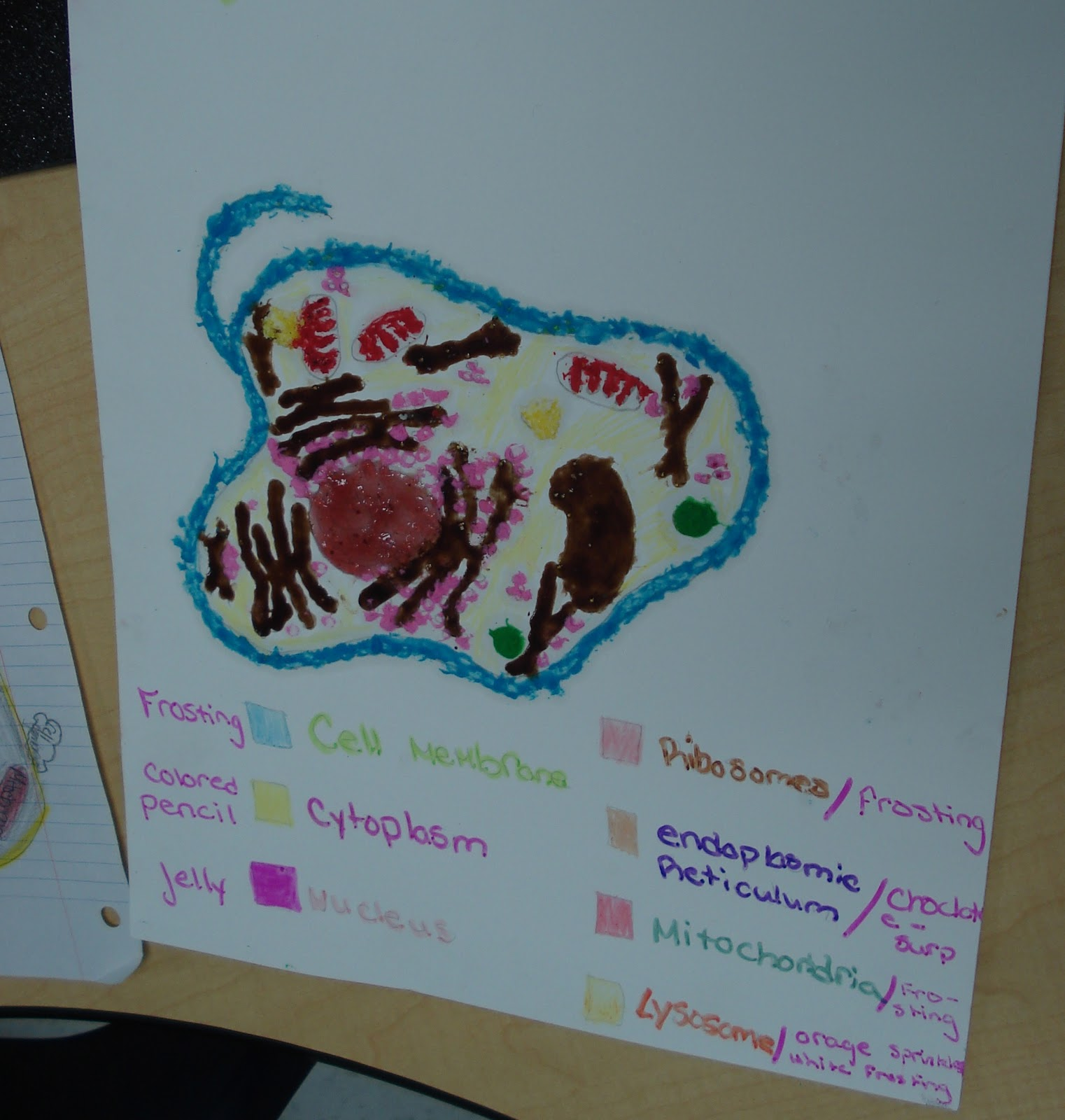 Cell Theory Be Creative And Design A Cell Here Are Some Diagrams To