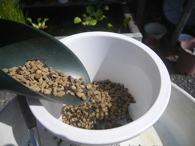 鉢底石 用土