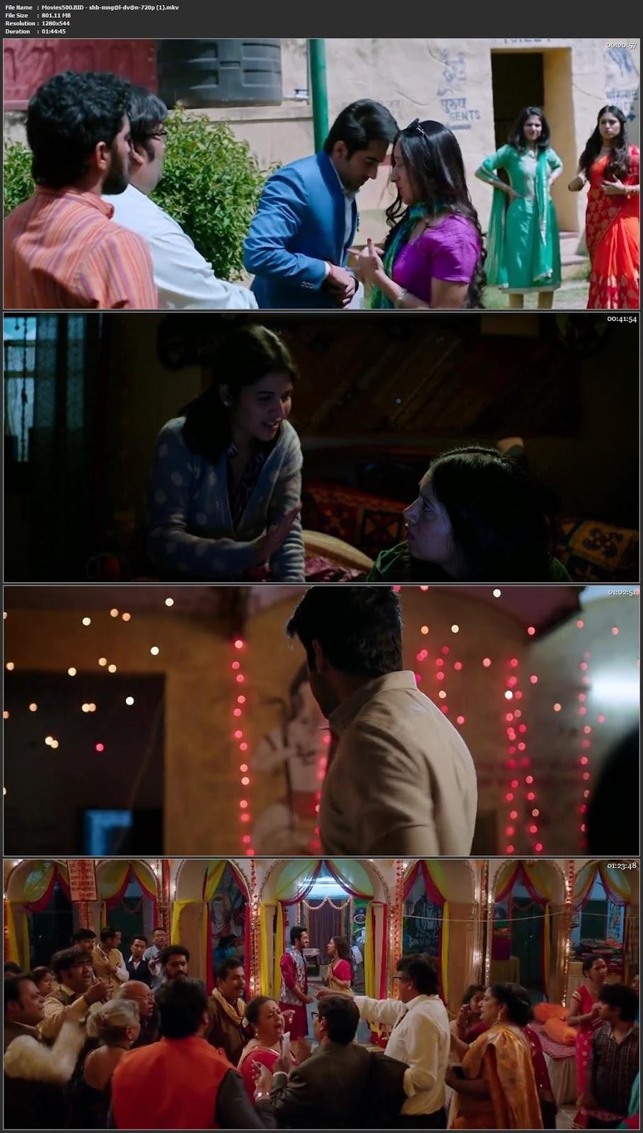 Shubh Mangal Saavdhan 2017 Hindi Full Movie DVDRip 720p at movies500.site
