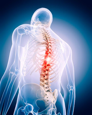 spine surgery Telangana