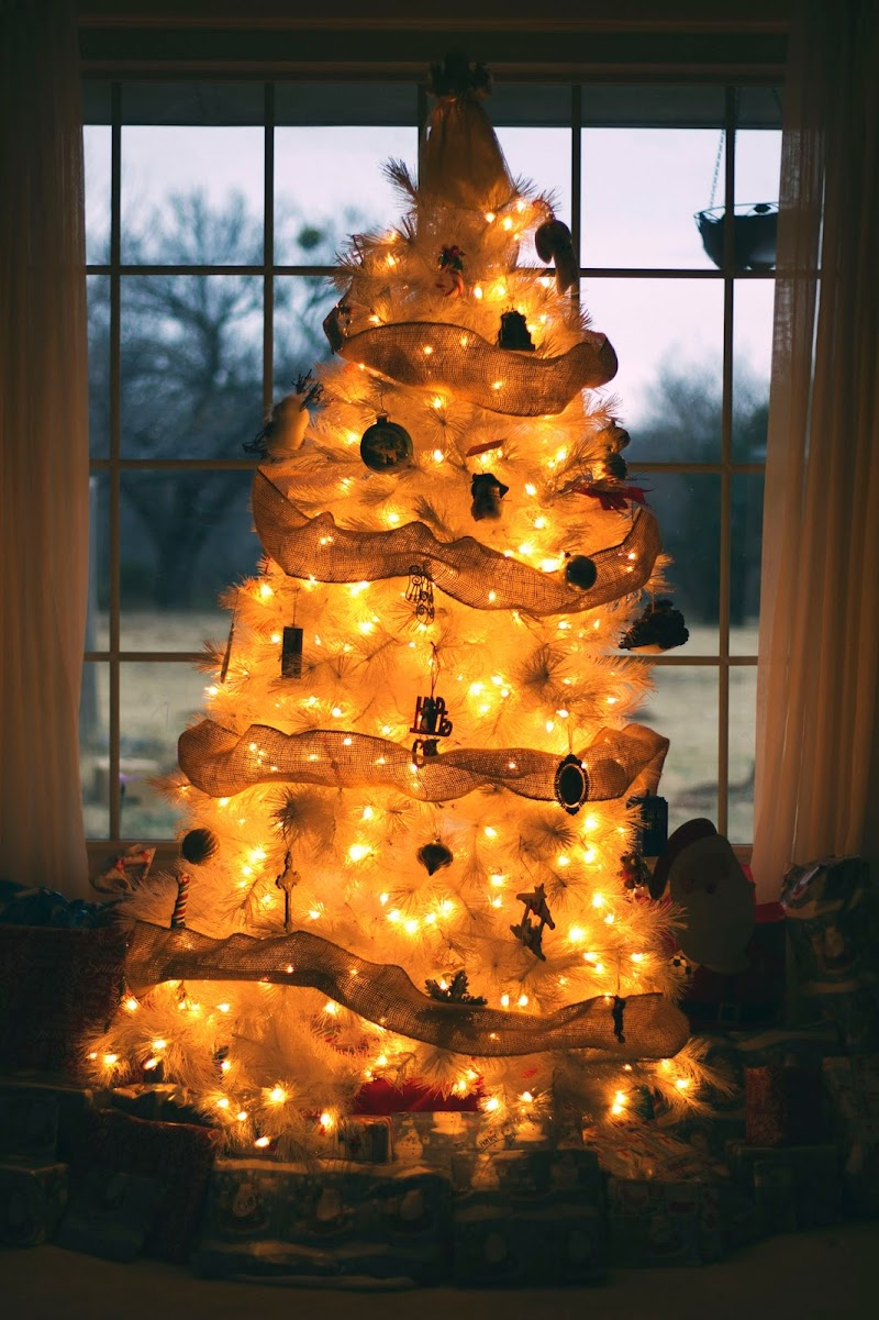 { Merry Christmas }